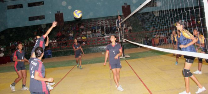 Inter Company Volleyball Matches